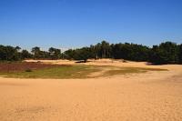 zandvlakte_bakkeveen